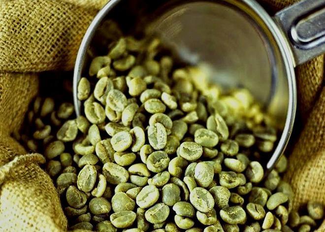 Cà phê xanh chứa một lượng lớn các hoạt chất chống oxy hóa