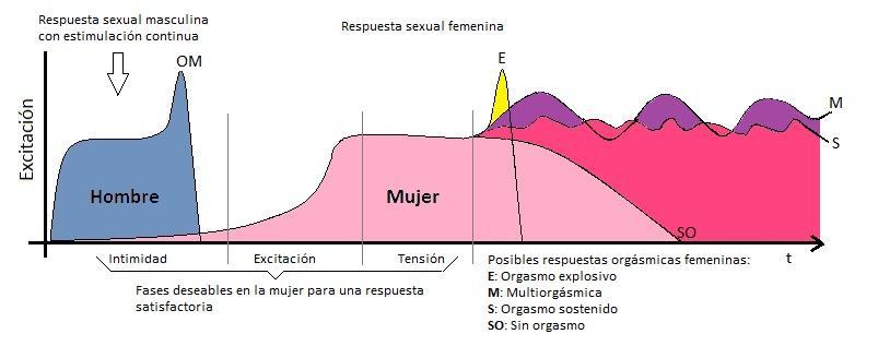 G:\Psicologia\Sex Disfunctions Curs especialització Tractament Disfuncions Sexuals\Recursos\Curva orgasmo completa con notas.jpg