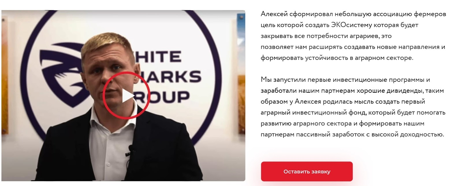 Инвестирование в White Sharks Capital: обзор проекта, отзывы