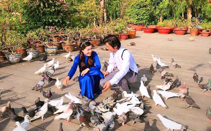 1. Hàng trăm chú chim bồ câu thân thiện vây quanh du khách.