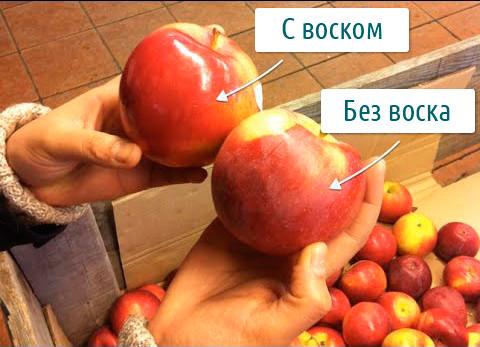 Яблоки с воском и без воска