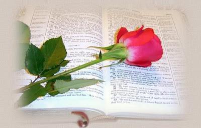 http://4.bp.blogspot.com/-WSPWdHmM8KA/TePfjw0HTHI/AAAAAAAABBA/_YH_IdqvtAQ/s400/bibleStemmedRose.jpg