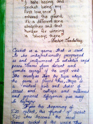 essay on my favourite game cricket for class 2