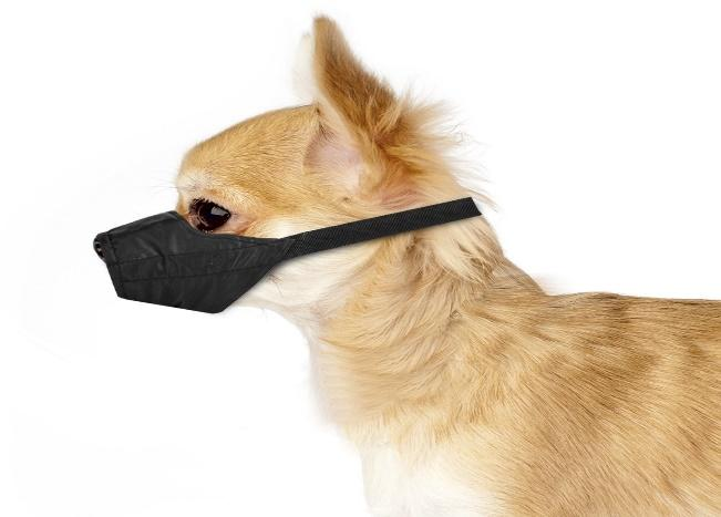 Funniest Dog Muzzles You won't Believe they Exist on Amazon.