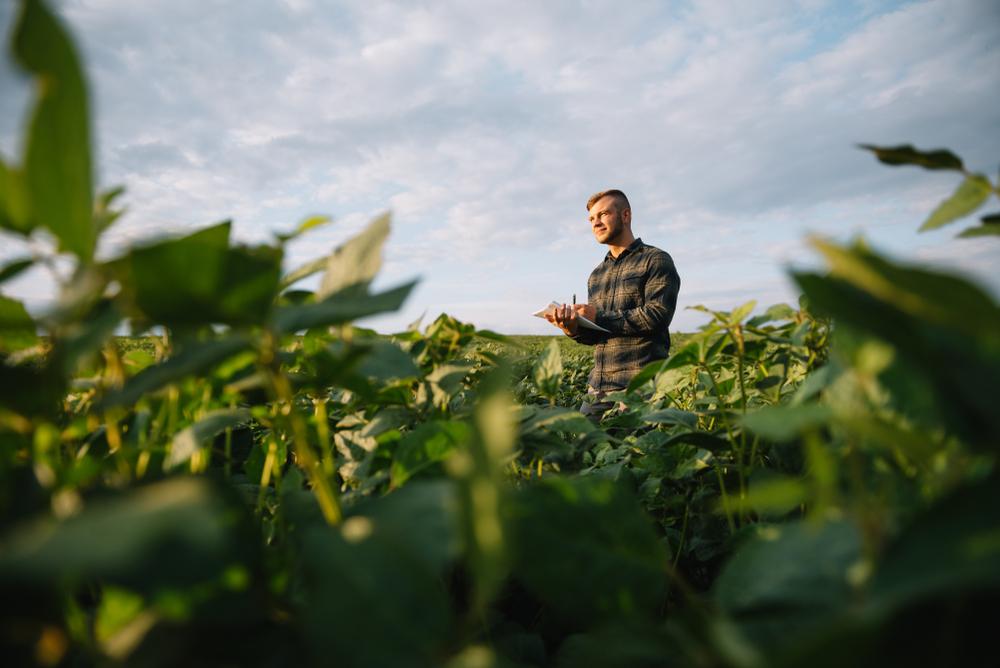 Falta de mão de obra qualificada também é problema na região rural do Brasil. (Fonte: Shutterstock)