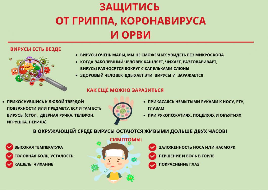 https://t-l.ru/i/ncr1058/797/277797/tn_277797_2cda7cde26bf296.png