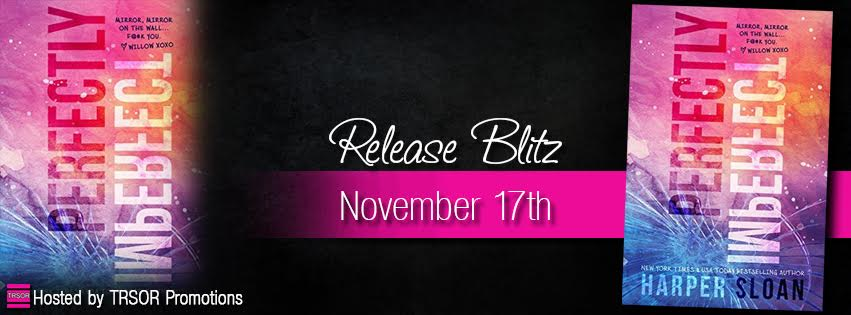 perfectly imperfect release blitz.jpg