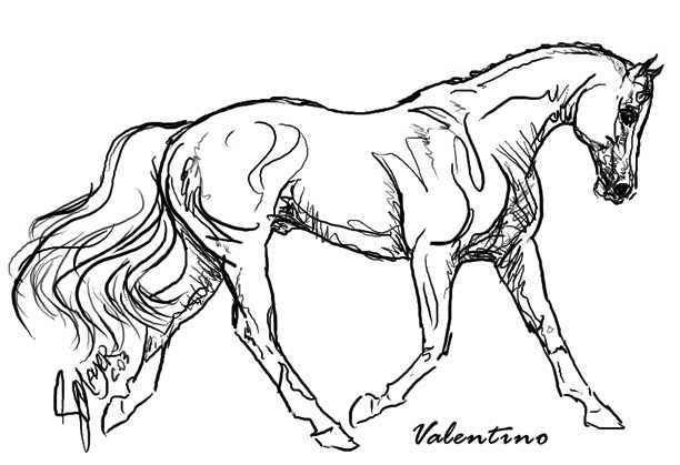 Awhitehorse Com Stacey Mayer S Free Online Coloring Pages