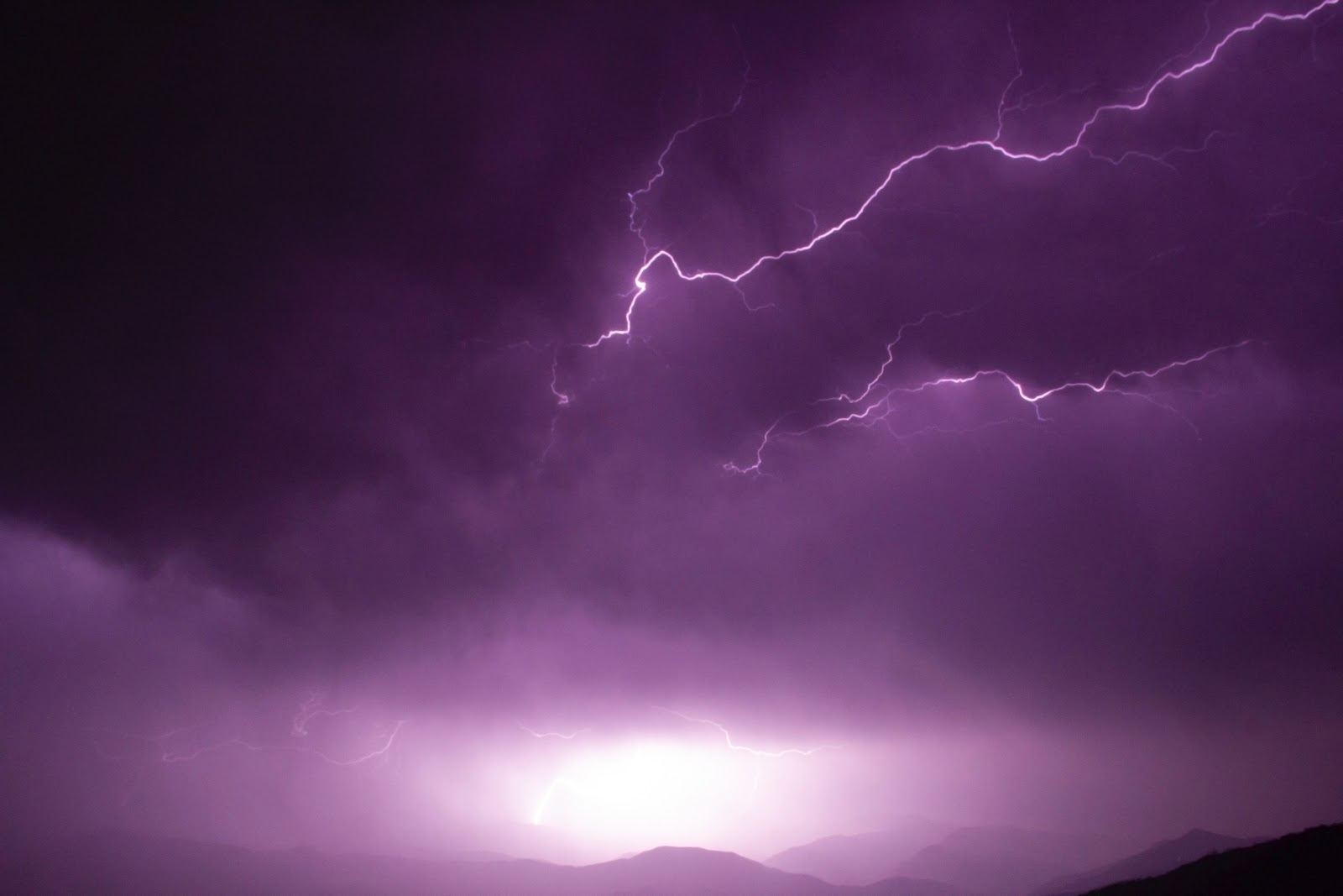 heavenly with thunder purple