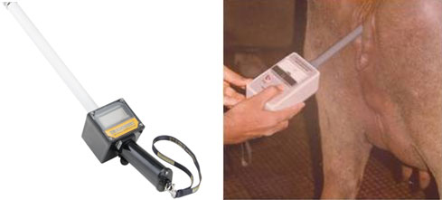 Commercially available vaginal electrical resistance probes for measurement of VER in buffaloes.