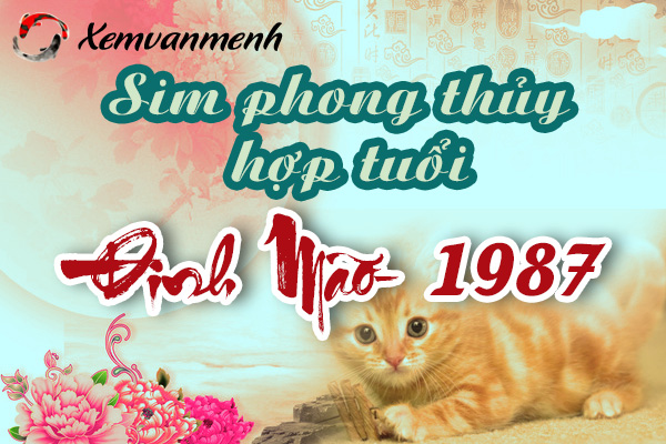 xem-sim-phong-thuy-hop-tuoi-dinh-mao-1987