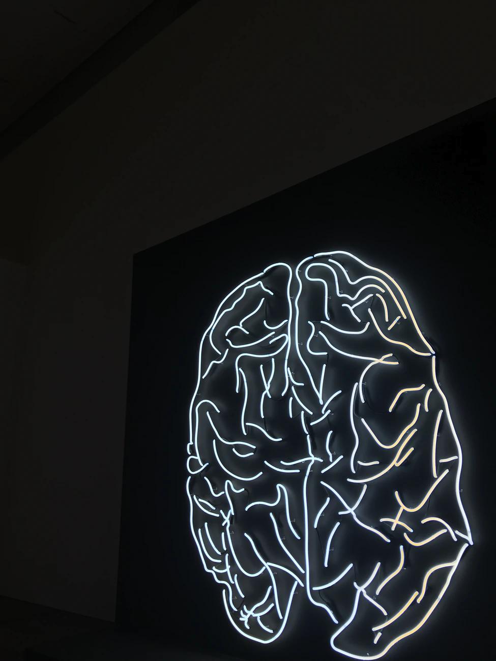 Left Brain vs Right Brain ( A guide)