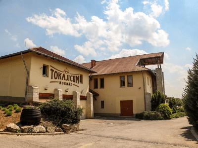 Tokajicum Borház