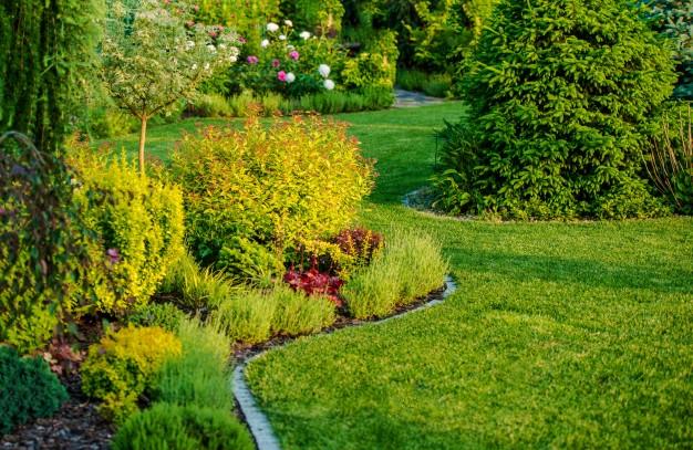 Bagaimana Landscaping Dapat Meningkatkan Nilai Properti Rumah Anda Sampai 30%