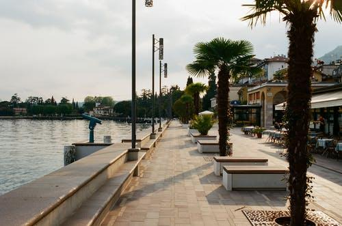 Waterfront of coastal town with residential buildings and tall lush exotic palms near rippling sea on summer day in resort