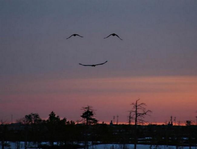 Самый улыбательный пост в мире