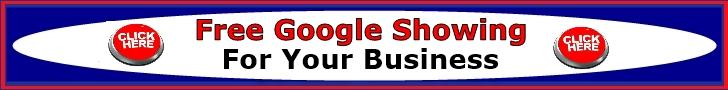 SilverFoxFreeGoogleShowingListingSEOOptimizati.jpg