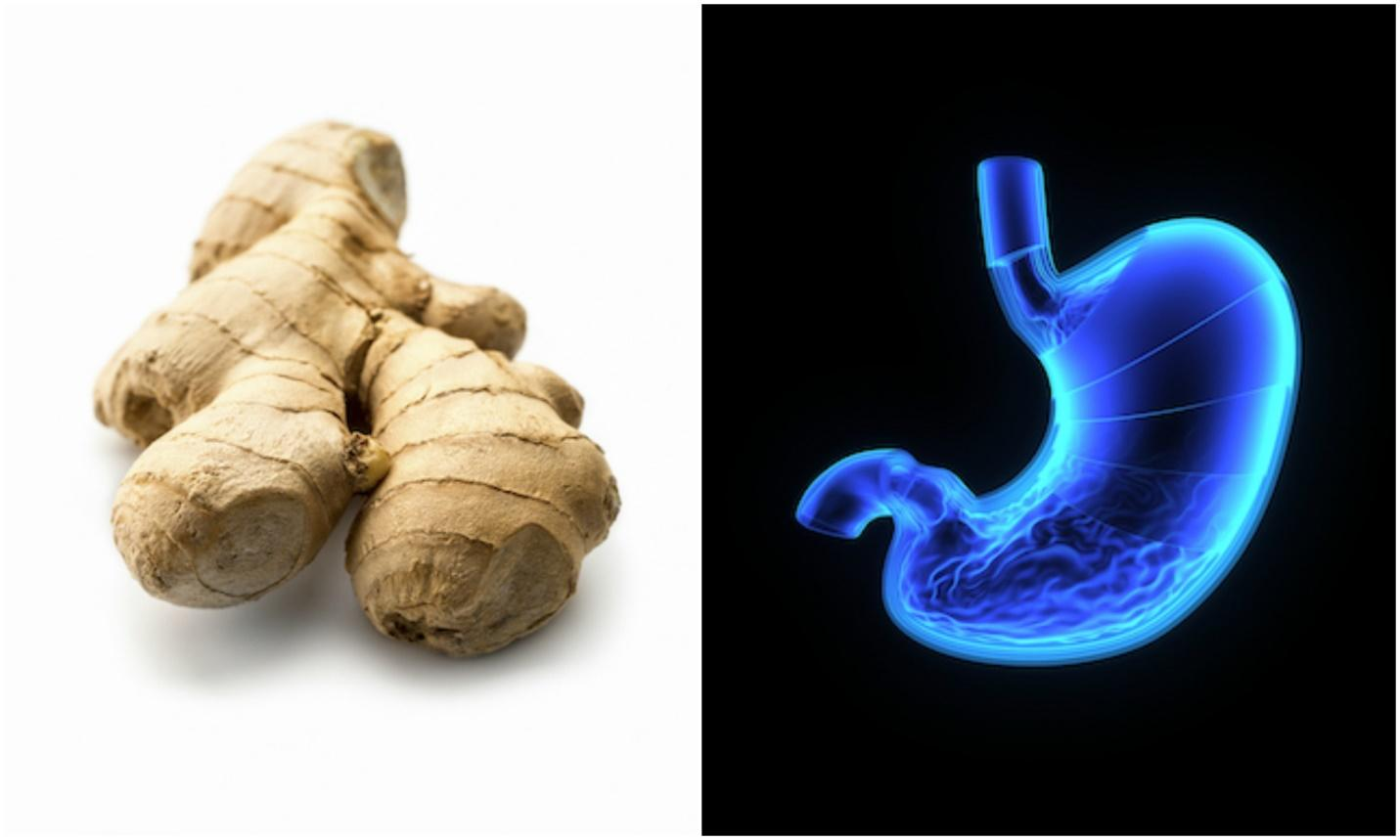 http://www.healthista.com/wp-content/uploads/2016/07/Ginger-and-stomach-foods-that-look-like-the-body-part-theyre-good-for-by-healthista.jpg