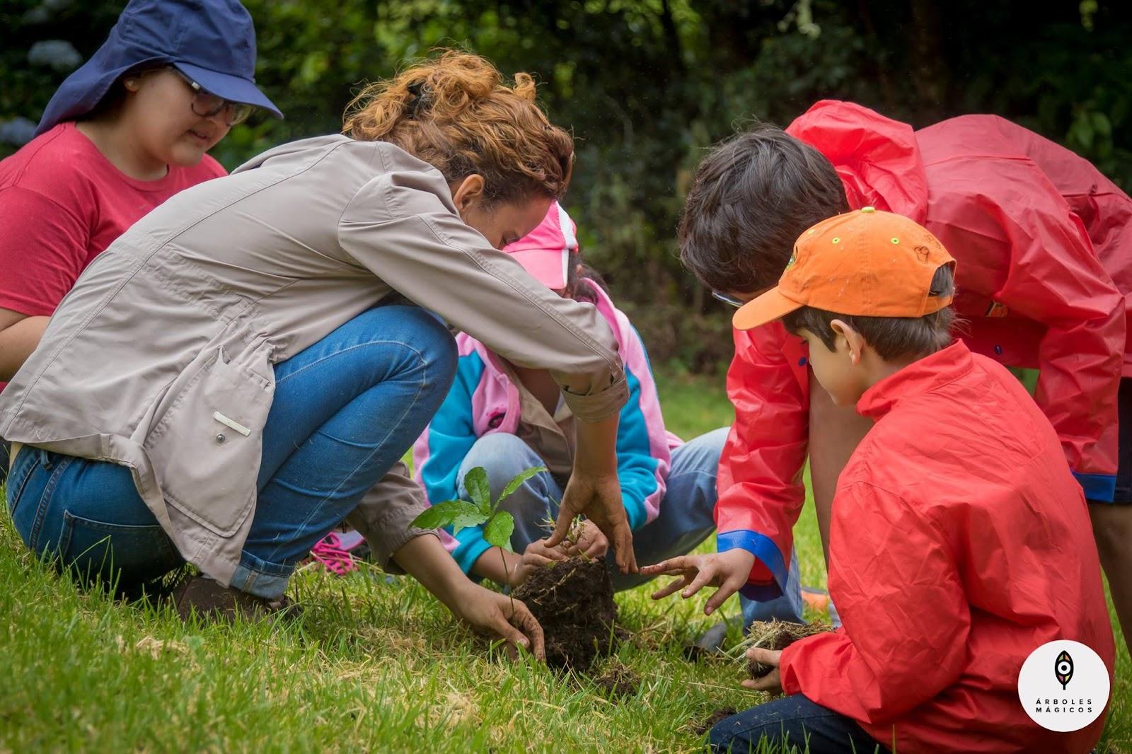 niños-sembrando-arbol