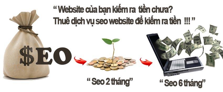 Dich vu seo tron goi website