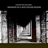 Shadow in a Sun Filled Room (Remastered)