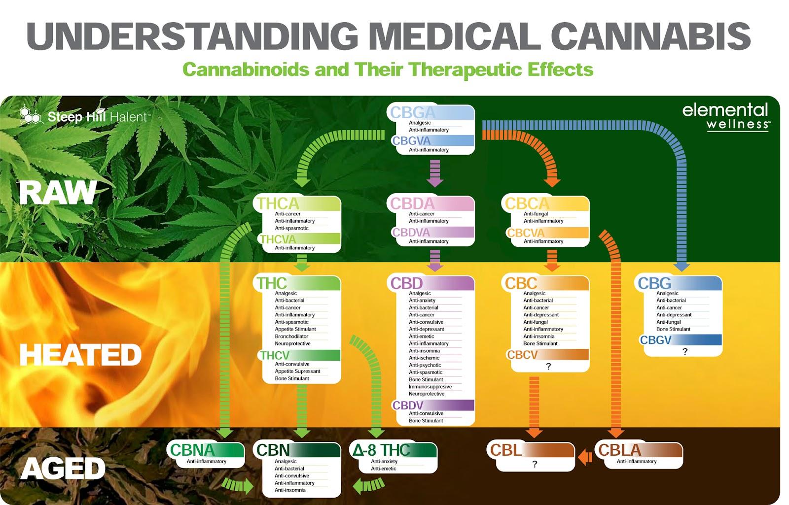 Understanding-Medical-Cannabis-2.jpg