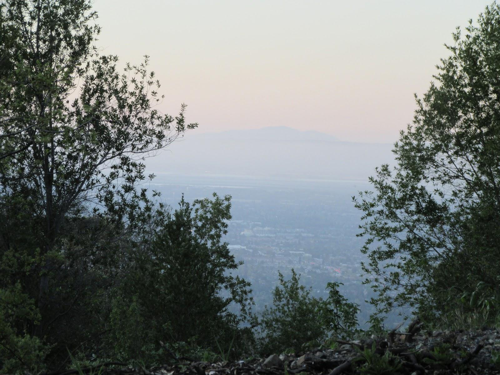 Climbing Bohlman Road by bike - view of Santa Clara Valley through trees