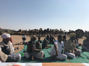 members of the Raika community sitting in the desert with their camels in the background