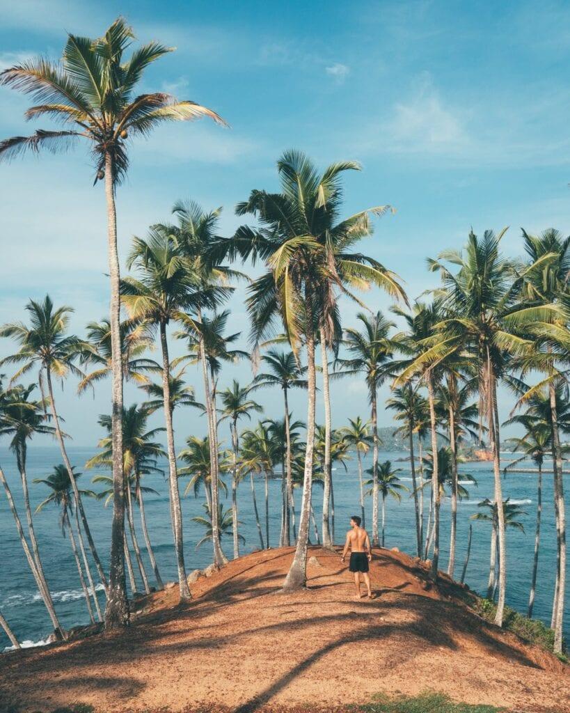 Opening of Sri Lanka to tourists