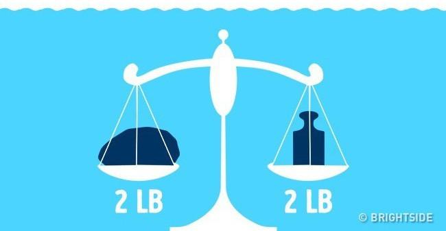 Có 1 cái cân. Một bên đựng tảng đá, bên còn lại đựng tạ sắt với trọng lượng ngang bằng nhau