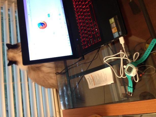 C:\Users\tll6h_000\Google Drive\Photos 2014\Blog\IMG_4099.JPG