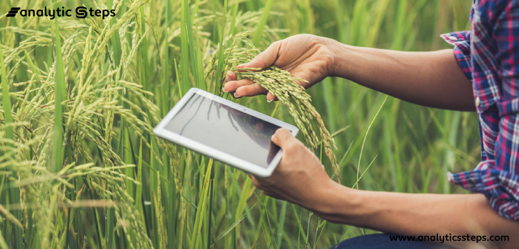 This image shows the use of IoT applications for the purpose of precision farming.