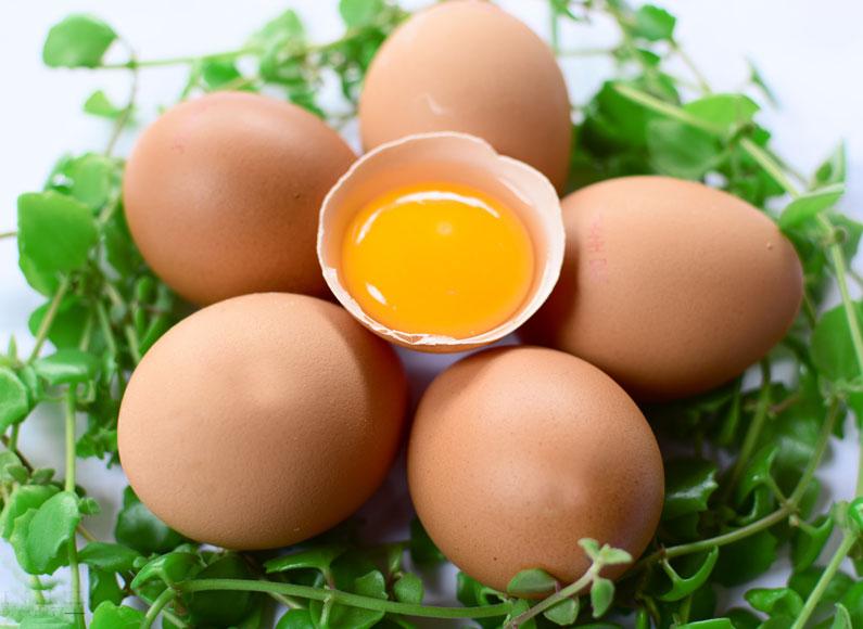 Vitamin B9 trong trong những loại thực phẩm nào