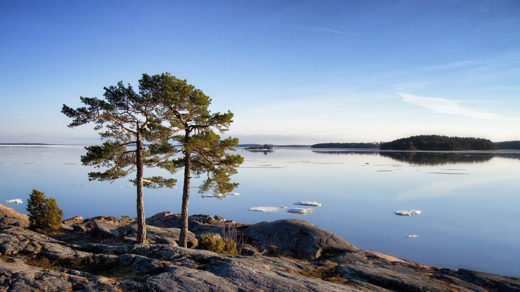 tree-lake-scenery-1024x575.jpg
