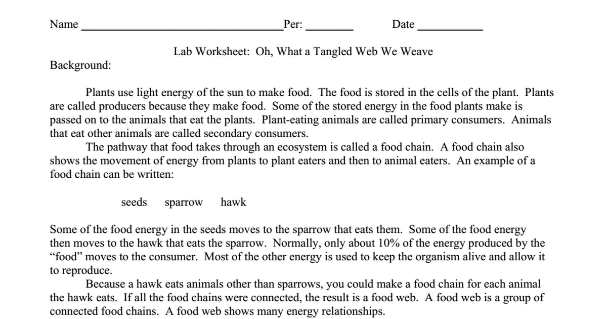 Lab Worksheet Oh What A Tangled Web We Weave Food Web Practicedoc