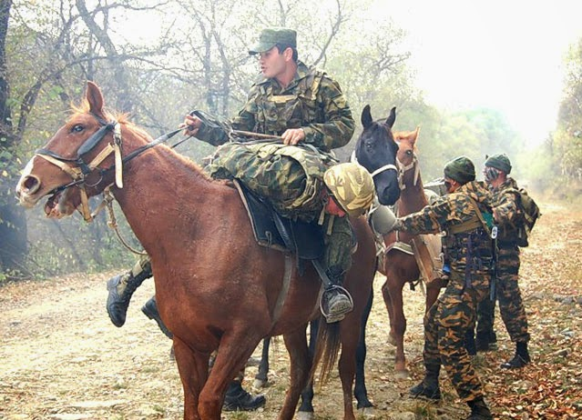 Горная бригада работает с лошадьми