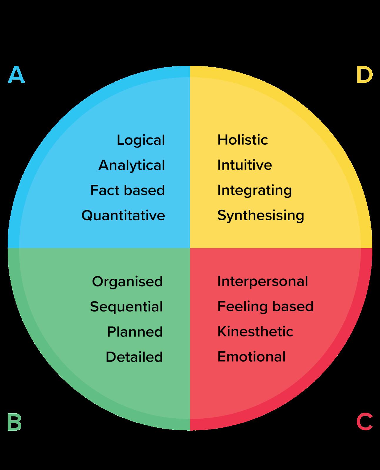 รูปภาพ Whole Brain Thinking Model