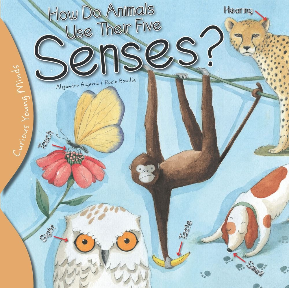 How do animals use their five senses