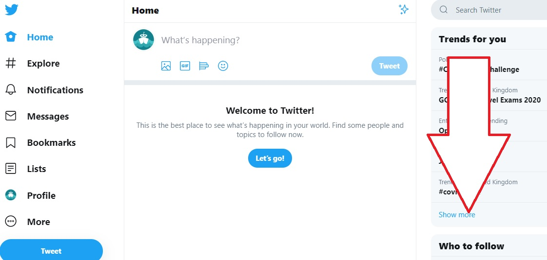 screenshot of Twitter showing a user's home page
