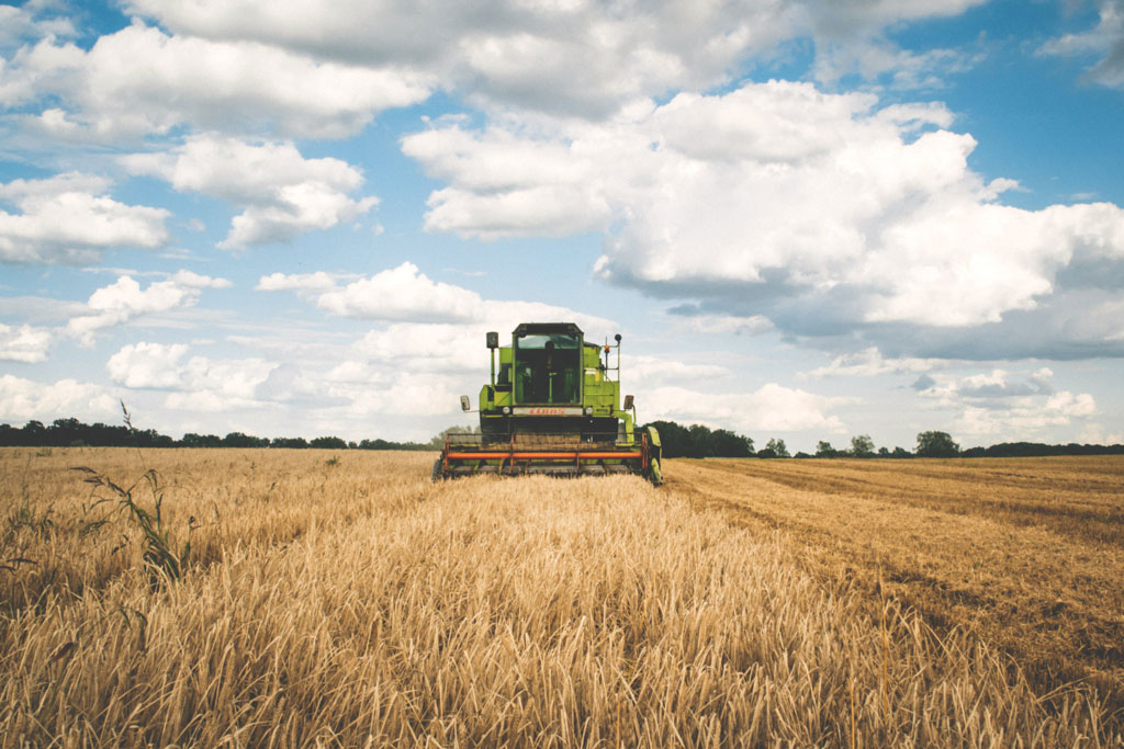 máquina agrícola realizando colheita