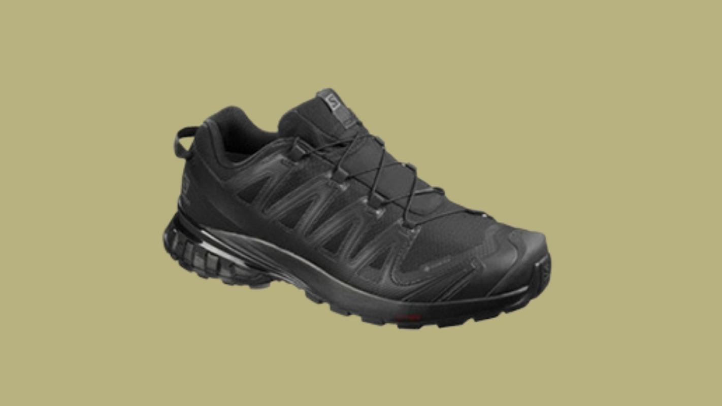 5. SALOMON XA Pro 3D V8 GTX รองเท้าเดินป่าผู้ชาย