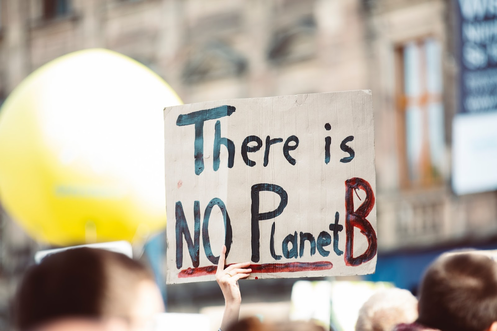 """There is NO Planet B"" pancard for Earth Day"