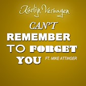 Can´T Remember to Forget You (feat. Mike Attinger)