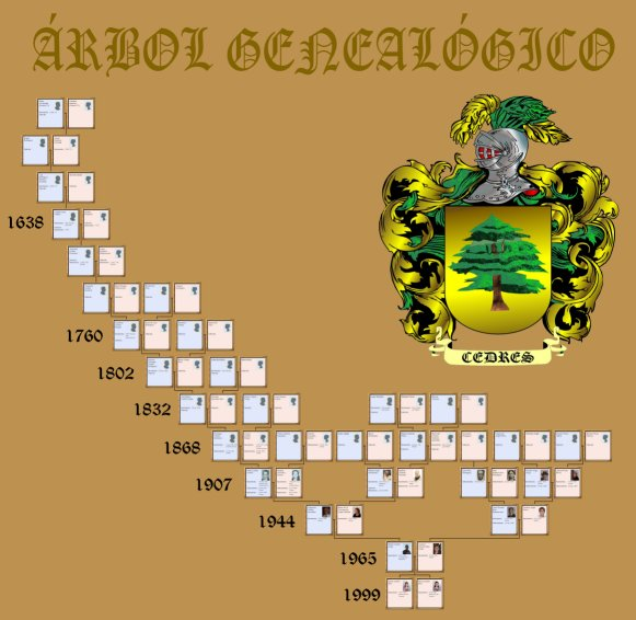 Historias De Tenerife Arbol Genealogico
