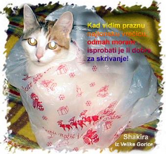 Shakira se sakrila u najlonsku vrećicu