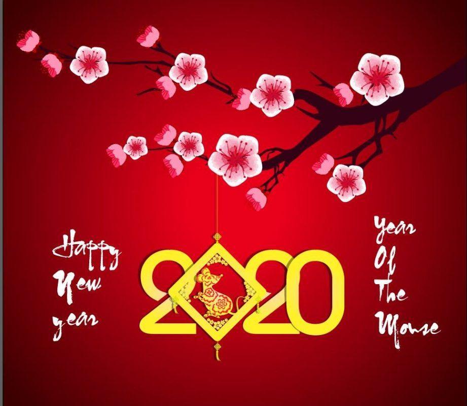 Kết quả hình ảnh cho hình ảnh chúc mừng năm mới 2020 đẹp nhất