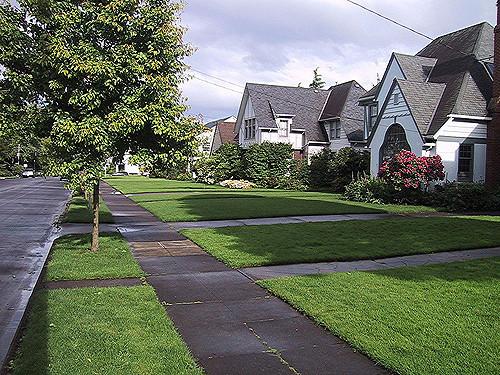 suburbs.jpg