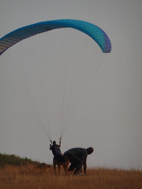 Наши опять в Индии (фото с поездки) P1000796