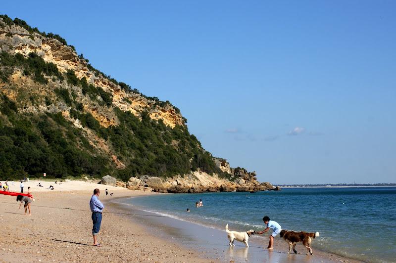 Praia do Portinho da Arrábida
