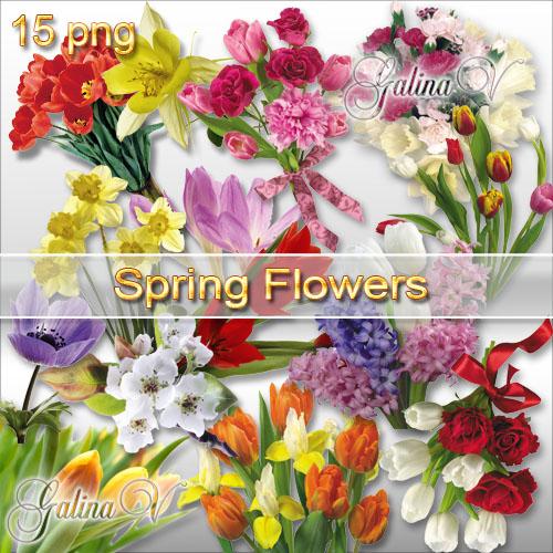 Клипарт PNG - Цветы Весны